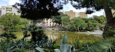 Plaza de Gaudí